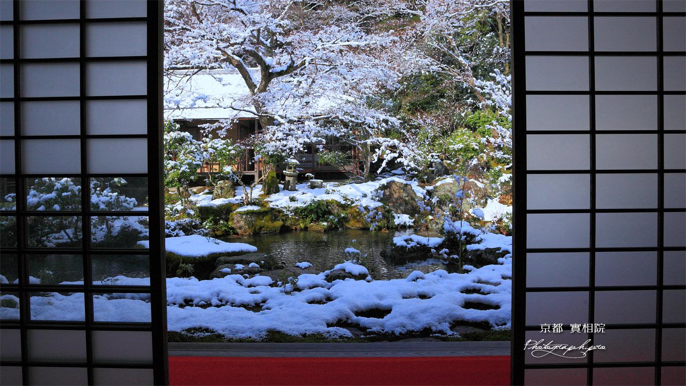 実相院 客殿から雪化粧の中庭 壁紙