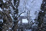 寂光院 参道の垂雪