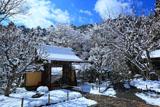 寂光院 雪の華と山門