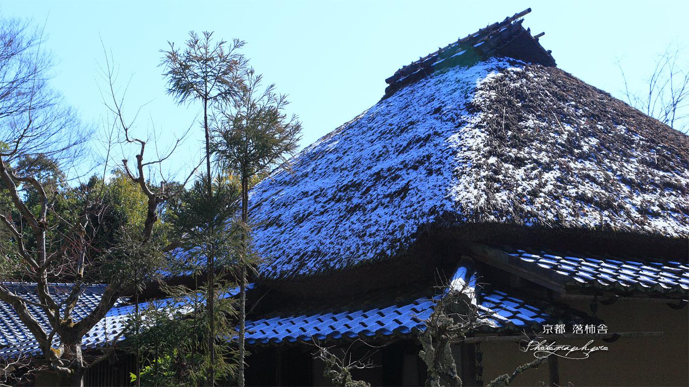 落柿舎 雪化粧 壁紙