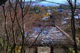 常寂光寺 淡雪の仁王門