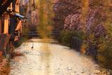 夕照の祇園白川