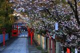 車折神社 表参道の桜