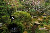 三千院の手水鉢とシャクナゲ