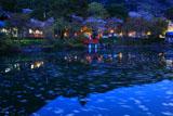 出雲大神宮 宮池の花筏
