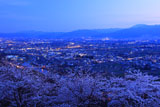 アルプス公園の桜 松本平の灯