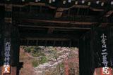 二尊院総門越しの桜