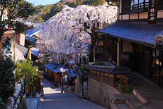 産寧坂重要伝統的建造物群保存地区
