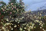 岩船寺の三椏と椿