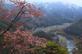 笠置寺 山桜と木津川