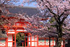 新日吉神宮