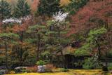 しょうざん 山桜と酒樽茶室
