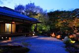 京都圓徳院 春の特別拝観ライトアップ