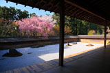 龍安寺 方丈と石庭