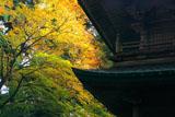 比叡山延暦寺 文殊楼と紅葉