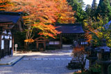 延暦寺横川 紅葉の四季講堂