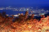 比叡山 夢見が丘紅葉ライトアップ