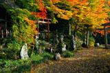 京都樒原 四所神社の紅葉