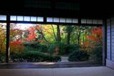 滝口寺 本堂からの紅葉