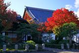 妙覚寺 紅葉と本堂