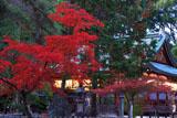 今宮神社 紅葉越しの拝殿