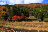 美山 佐々里の茅葺き民家と紅葉