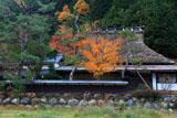 京都広河原 能見町の茅葺き民家と紅葉