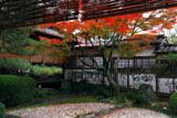 御香宮神社 遠州ゆかりの石庭の紅葉