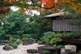 御香宮神社 紅葉と遠州ゆかりの石庭
