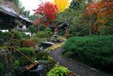京都十輪寺 紅葉の地泉庭園