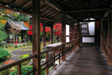 京都十輪寺 高廊下から鐘楼と紅葉