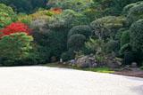 南禅寺金地院 紅葉の鶴亀の庭