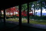 円通寺 御幸客殿から紅葉の庭園