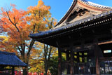 京都方広寺 鐘楼と紅葉