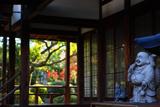 法住寺 阿弥陀堂の布袋尊と紅葉