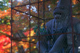 新日吉神宮 神猿の像