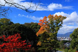 豊国廟 紅葉と京都市街