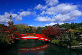 神泉苑 法成橋と紅葉