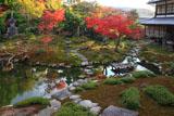 光雲寺 紅葉の庭園と庫裏