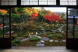 光雲寺 書院から紅葉の庭園