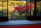 光雲寺 茶席から紅葉の庭園