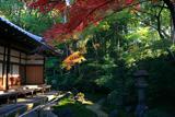 栄摂院 紅葉と本堂