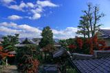 京都達磨寺 大法輪塔から紅葉の境内