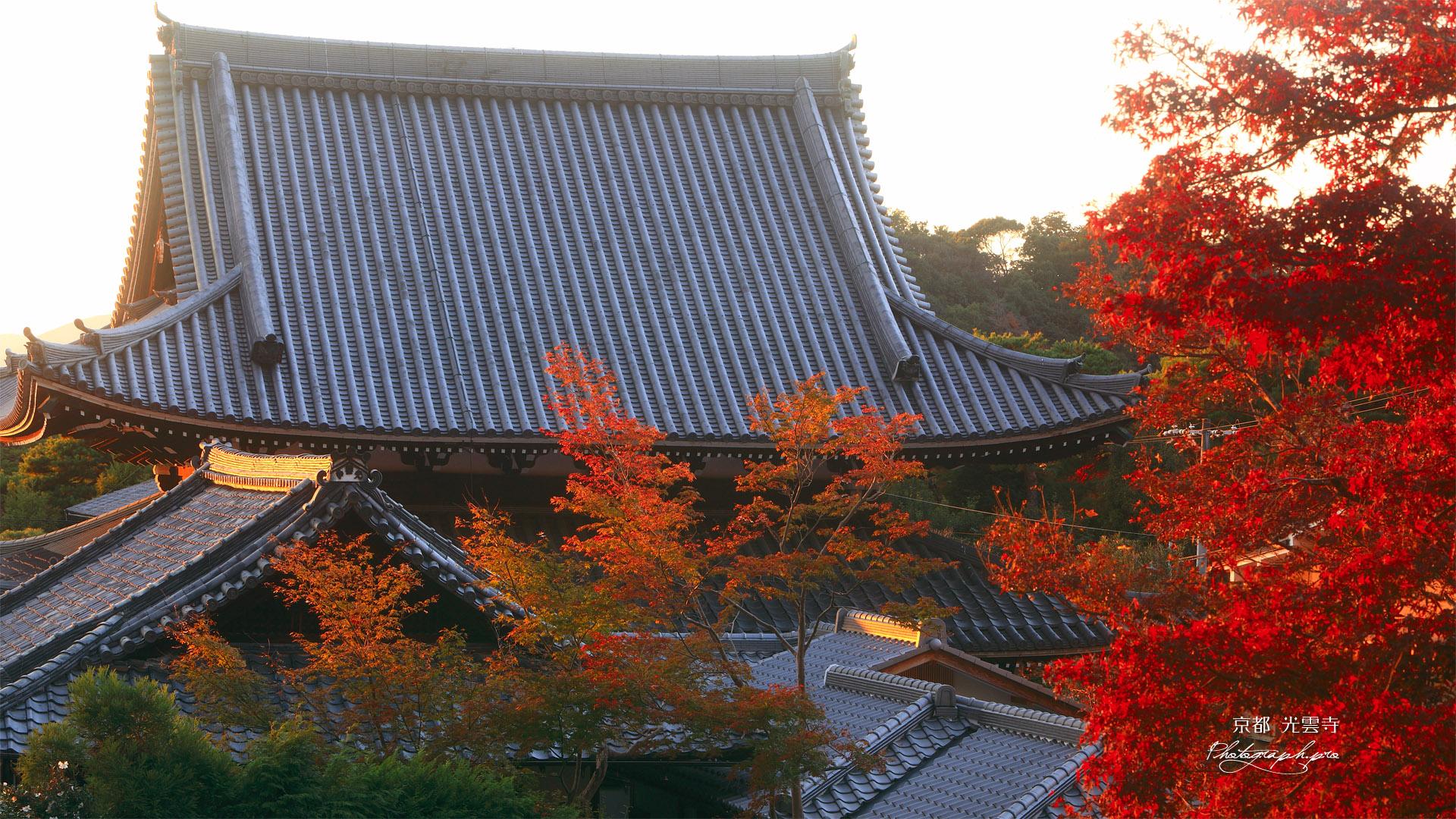 哲学の道 紅葉と光雲寺