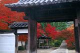 一休寺 総門越しの紅葉