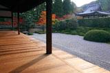 一休寺 紅葉の方丈庭園