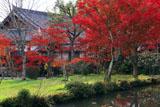 京都観音寺 紅葉と庫裏