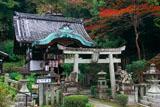 京都 吉水弁財天の紅葉