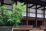 京都御所 漢竹と清涼殿