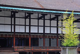 京都御所 呉竹と清涼殿
